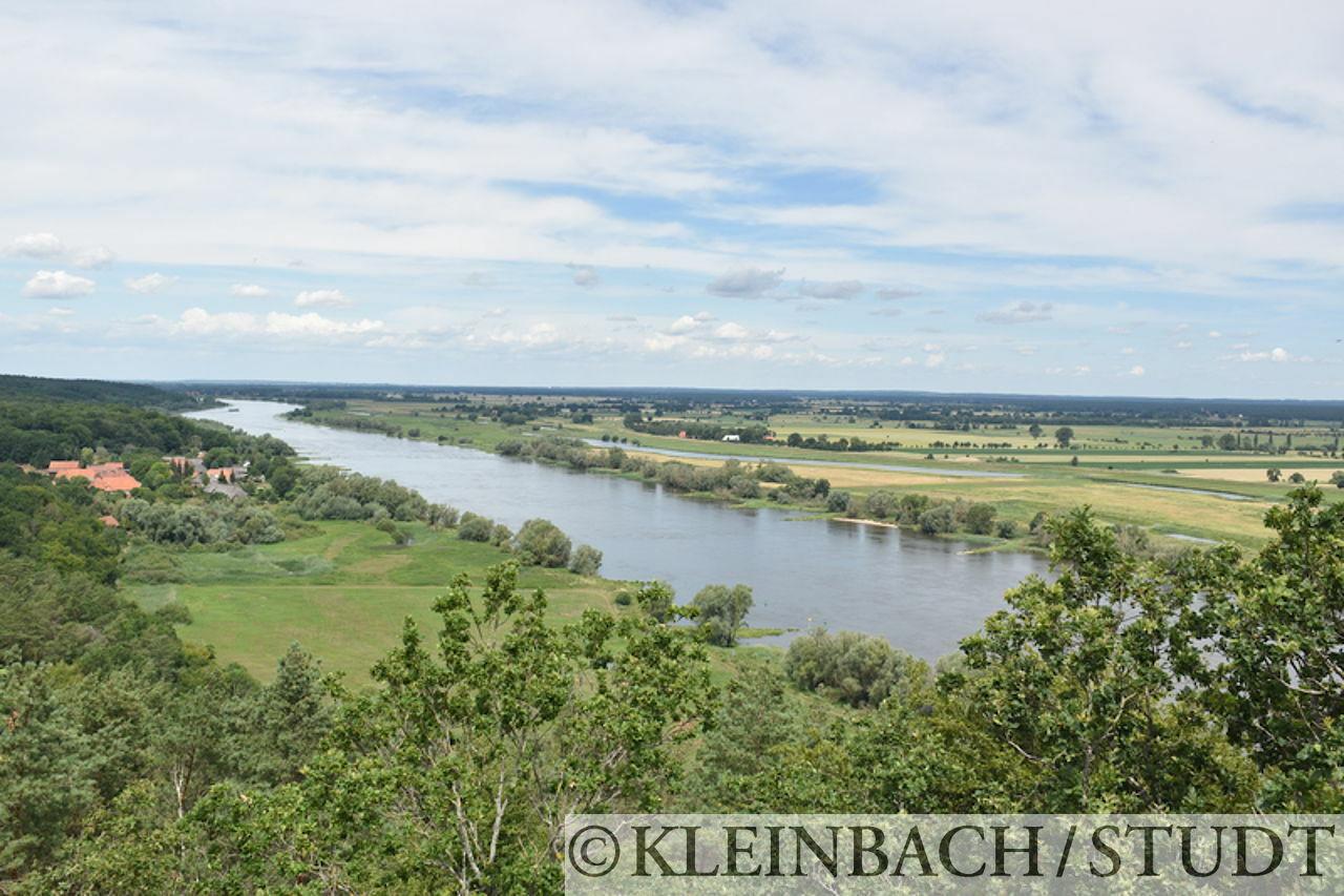 Blick vom Aussichtsturm Kniepenberg auf die Elbe