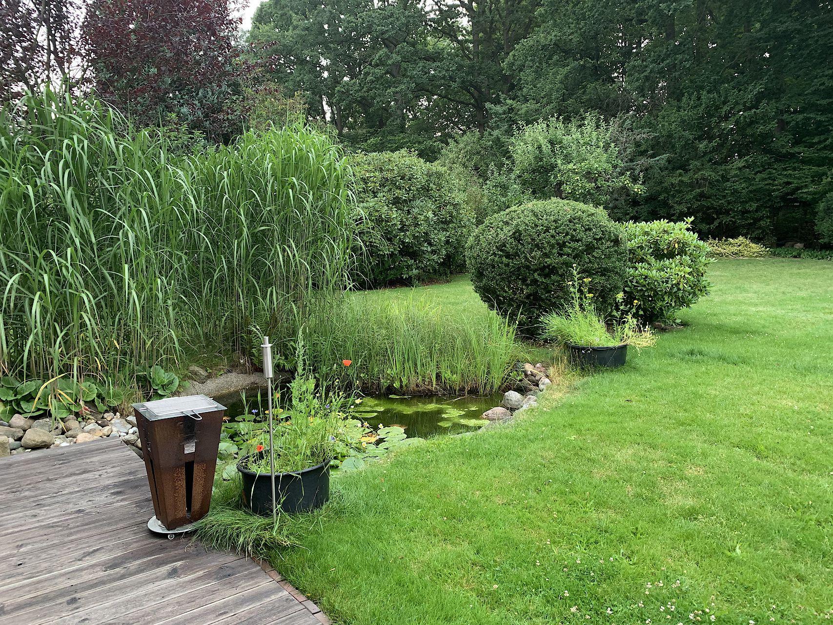 Erster Blick in den Garten